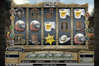 Dead or Alive Slot Scatters