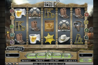 Dead or Alive Online Slot Screenshot