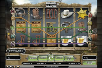 Dead or Alive Online Slot Wilds