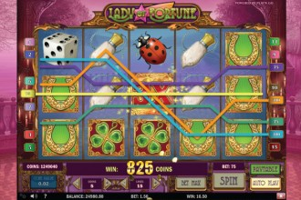 Lady of Fortune Slot Reels
