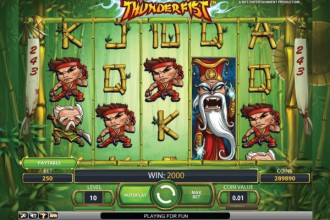 Thunderfist Online Slot Reels and Wilds