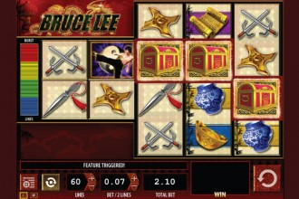 Bruce Lee Slot Free Spins Scatters