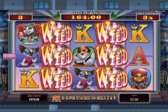 Kitty Cabana Slot Free Spin Wilds