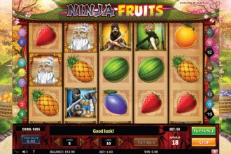 Ninja Fruits Slot Reels