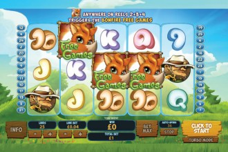 Foxy Fortunes Slot Reels