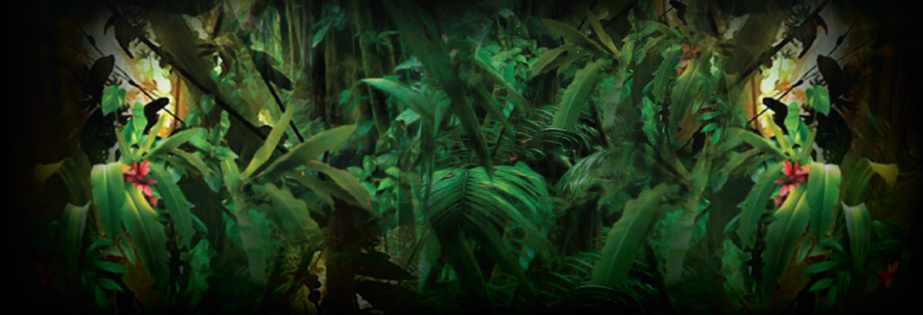 Jungle Wild Background Image