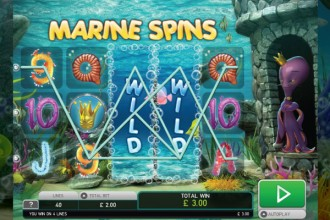 Octopus Kingdom Slot Stacked Wilds Wins