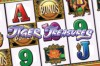 Tiger Treasures Slot Logo