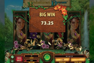 Rainforest Dream Slot Big Win