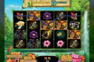 Rainforest Dream Slot Free Spins