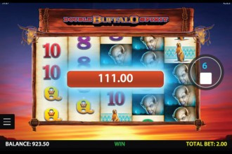 Double Buffalo Spirit Slot Big Win
