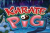 Karate Pig Slot Logo