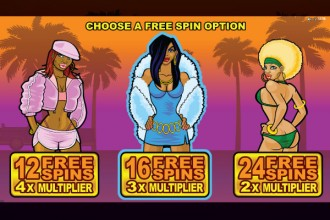 Loaded Slot Free Spins Choice