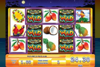 Luau Loot Slot Free Spins Wilds