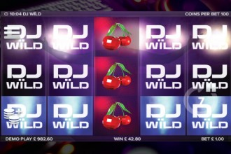 DJ Wild Slot Wilds