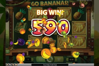 Go Bananas Slot Big Win