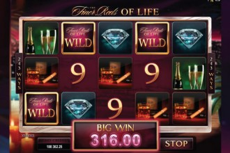 The Finer Reels of Life Slot Win