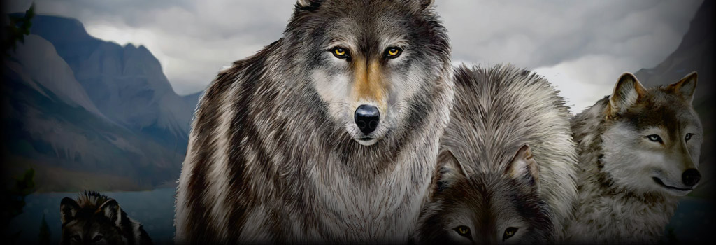 Untamed Wolf Pack Background Image