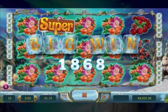Winterberries Slot Super Big Win