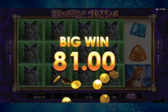 Pretty Kitty Slot Big Win