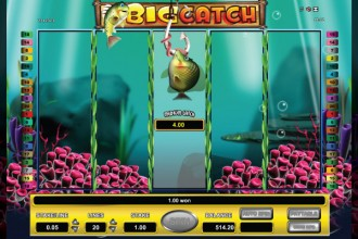 Big Catch Slot Fishing Feature