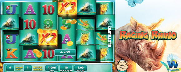 Raging Rhino Online Slot Win Example