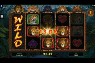 Exotic Cats Slot Free Spins